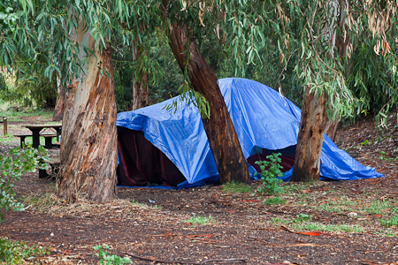 Blue Tarp Tenting at Scorpion Ranch on Santa Cruz Island